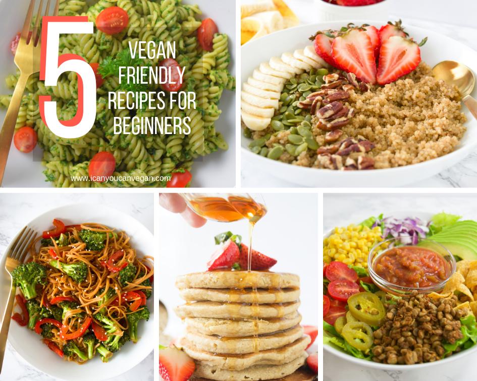 Vegan Beginner Recipes