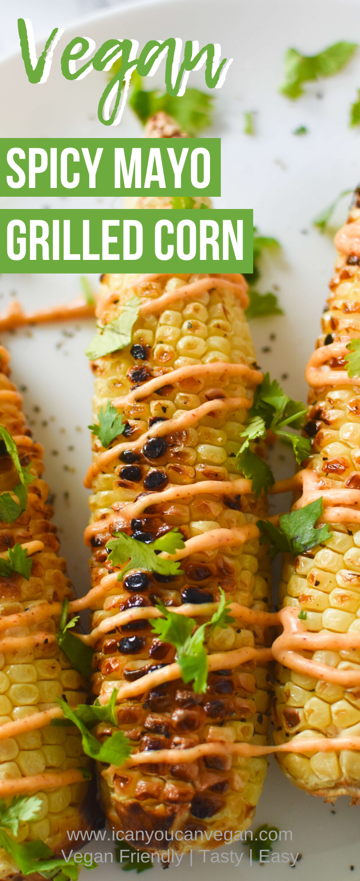 Spicy Mayo Grilled Corn Pinterest